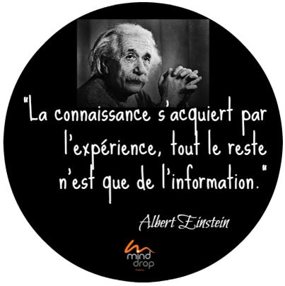 Infobésité - information vs expérience