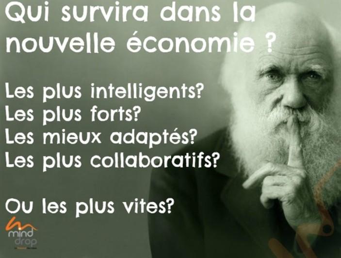 économie - Darwinienne ou de partage?