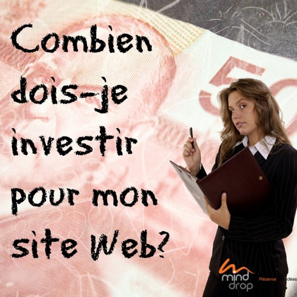 Investir-site-Web-Budget-Mind-Drop