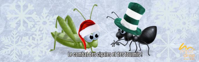le combat des cigales et des fourmis!